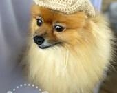 Cowboy Pet Hat (XS-XL)
