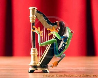 Harp, Music art, Musical Instrument Humor, Frog Playing the Harp, Harpist