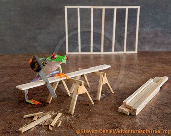 Carpenter Frog Doing Construction House Building Wood Working
