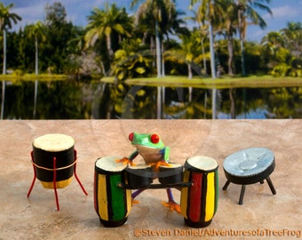 Raggae Art, Drumming Frog, Jamaica Art Photograph