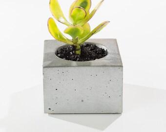 MICRO ORB Concrete Succulent Planter / Concrete planter/ Air plant holder