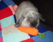 large jingle carrot bunny rabbit hand knit toss and carry toy
