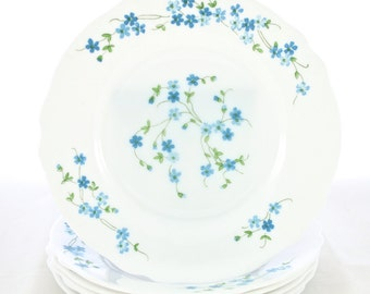 French White Milk Glass Dinner Plates Dinnerware Dishes Set Made in France Forget Me Not