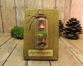 Miniature Mushroom Specimen Display - Reclaimed Wood - Raku Fired - Trophy - Magnet - Wall Hang - Home Decor - Handmade by Gypsy Raku