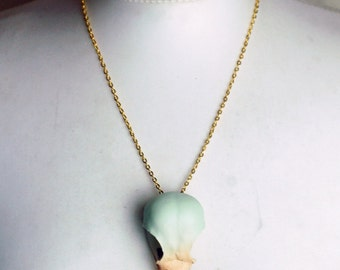 Crow skull taxidermy hand painted  real crow skull necklace in virgin mint green, cappuccino and vampirella real bird skull