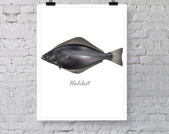 """Halibut Fish Poster Print, Illustration Print , Premium Wall Art Decor, Minimalist Print 13"""" x 19"""""""