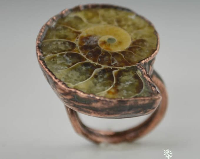 Ammonite Fossil Statement Ring, Fossil Ammonite Ring, Electroformed Ring, Ammonite Jewelry, Gemstone Ring, Wearable Art, Statement Ring