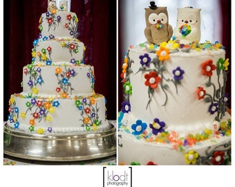Unique Owls wedding cake toppers - rainbow bride groom love birds bridal gift brown rustic country funny elegant personalized royal blue red