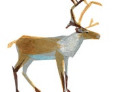 Clive Caribou - Animal Art Print