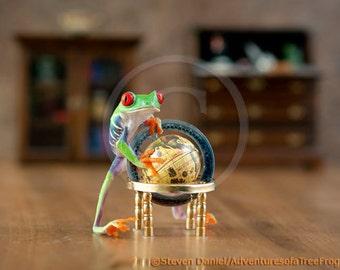 Globe and Frog, World Map, Teacher Art, Professor, World Affairs, Education Art