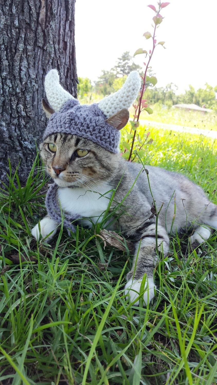 Knitting Pattern Viking Hat