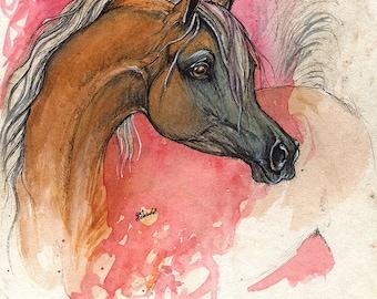 Framed original ink and watercolour painting of palomino arabian horse