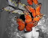 Butterfly hat,Effie Trinket, Hunger games, Catching fire, Orange Feather Butterfly button hat, fascinator,butterfly costume hat.