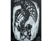 Spine Scoliosis Study (April 2014) original drawing of skeleton anatomy historical specimen