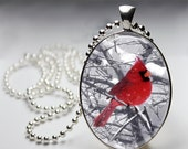Winter Carinal - Bird Pendant - Oval Pendant in Silver Bezel - Chain Sold Separately