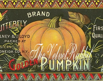 Digital Download Instant.Pumpkin advertising label. Great one. Make cards,halloween offerings,gift tags, price tags,pillows and more.