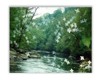 river flora: large canvas wall art. ready to hang photo. dreamy flower nature photography zen decor. enchanted forest green fairytale woods.