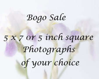 5 x7 or 5 inch square Prints, Bogo Sale, Photos of Your Choice,  Fine Art Photographs