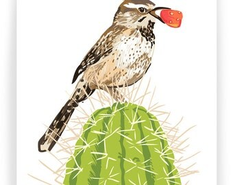Cactus Wren and Fruit : Box of 8 A2 folding blank cards