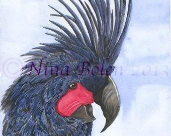 Black Palm Cockatoo Original Painting Wildlife Art by Nina Bolen OOAK Artwork