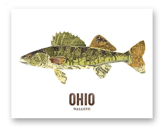 ohio state fish map art nature outdoor art vintage map art