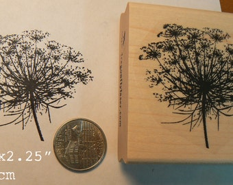 P57 Queen Ann's lace flower rubber stamp