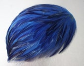 Feather PADS - VINTAGE - electric BLUE feathers - set of 2