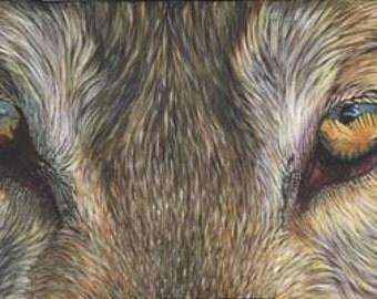"Akiko CANVAS PRINT of Dog Wolf Eye Painting 8""x24""x3/4"" ready to hang"