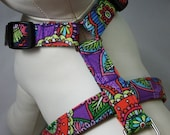 Dog Harness - So Pretty
