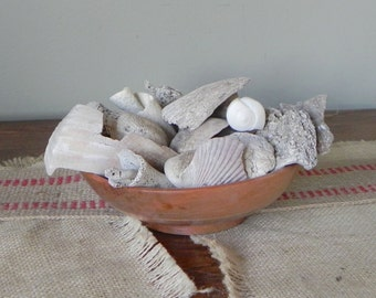Vintage seashells and other beach creatures tumbled distressed - great bowl filler - No. 3 shabby chic
