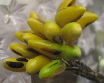Czech Repubic Stamen Millinery Flower Berry Fruit Bananas Peps 15 Stems  MN CZ42