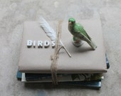 Set of Four Vintage Bird Books, Instant Library Collection, Birdwatchers