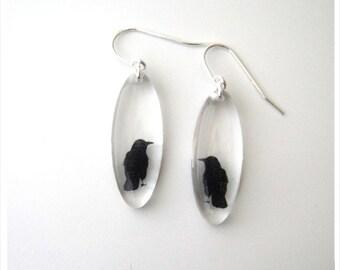 Acrylic Oval Crow Earrings