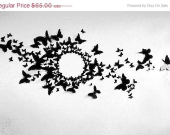 90 3D Butterfly Wall Art Circle Burst