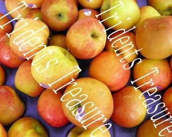 Gala Apples Wall Art - Warhol-esque Wall Art - Digital Food Art - Photography - Kitchen Art - Restaurant Kitsch