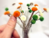 25 Button flowers dried-small straw like flowers-Corsage flowers-wedding flowers-Orange-Green Ivory
