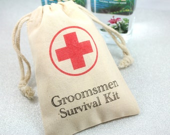 Groomsmen Survival Kit Favor Bags 4x6  - Set of 5 -  wedding party gifts