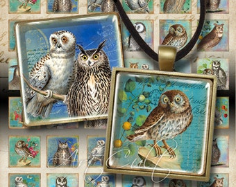 Printable Download OWLS 1x1 inch squares Digital Collage Sheet for glass or resin pendants bezel setting trays scrapbook art cult graphics