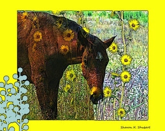 Horse In Sunflowers, Southwestern Photomontage Art, Native American Totem Animal, Yellow Home Decor, Wall Hanging, Giclee Print, 8 x 10
