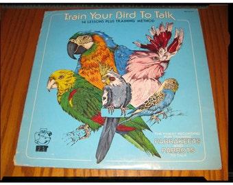 "VINTAGE 1976 KiTsChY Record ""Train Your Bird To Talk"" Polly Want a Retro Record? Lesson Training StRaNgE OdDiTiEs Spoken Word Vinyl LP Album"