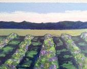 BIG 30x40 Impressionist VINEYARD Painting CALIFORNIA Plein Air Landscape Winery Grapevines Art Lynne French