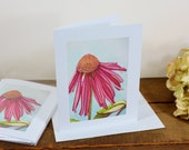 Blank note cards / Original watercolor print note cards / set of 6 / echinacea flower