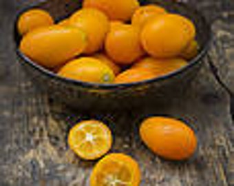 1 oz Malayan Kumquat Fragrance Oil