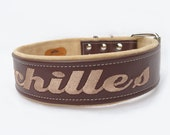 Two inch adjustable leather dog collar personalized with embroidery  - This designer collar is an embroidered collar by Ruggit Collars