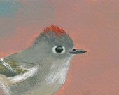 Ruby-Crowned Kinglet - you choose the size