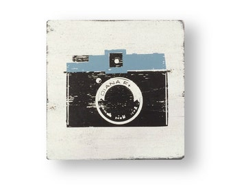 The Iconic Diana F 15 x 15 FREE Shipping to the continental US