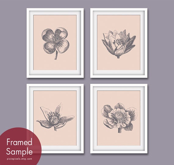 Botanical Flower Bud Prints (Series A) Set of 4 - Art Prints (Featured in Pale Bermuda Pink and Charcoal)