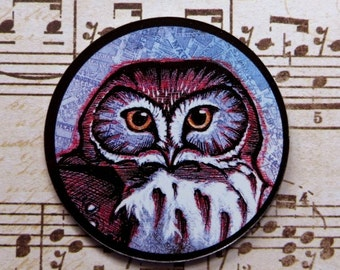 Saw Whet Owl (art magnet)