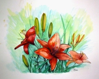 ORANGE DAYLILIES - Original Hand Colored Watercolor Botanical Print 11 x 14