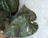 Vintage tin ivy leaves